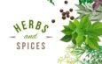 Herbs and spices for good health in winter