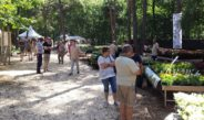 Festival Bloem en Tuin to be held at Gulberg Estate