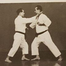 Weekly Furin Karate Dojo class in Eindhoven