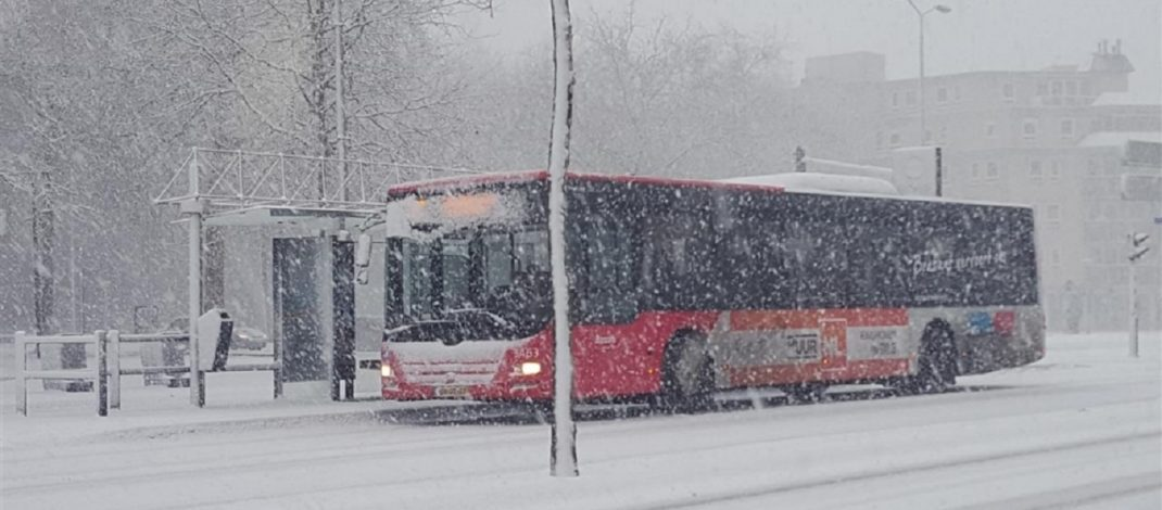 No busses in Eindhoven region; unclear when service will resume